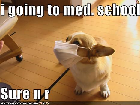 i going to med. school  Sure u r