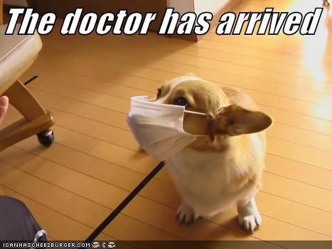 The doctor has arrived