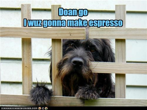 Doan go I wuz gonna make espresso