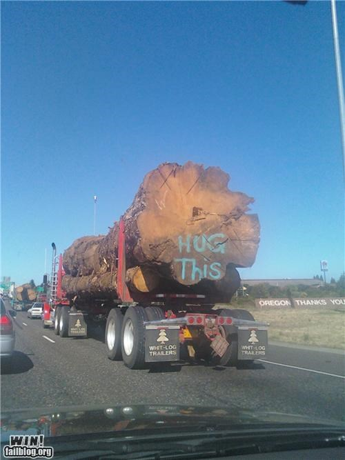 clever,hippies,tree hugger