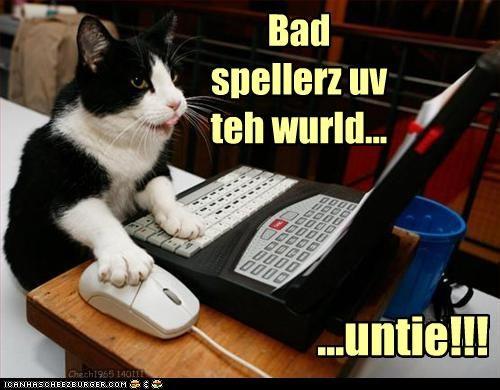 caption,captioned,cat,dyslexia,laptop,punch line,slogan,unite,untie,writing