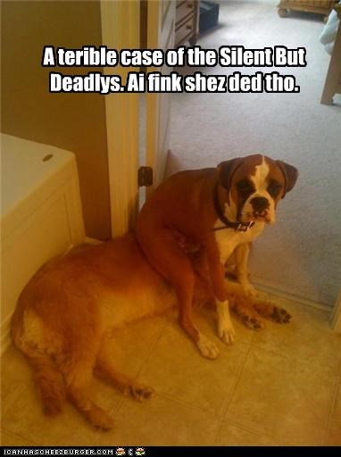 A terible case of the Silent But Deadlys. Ai fink shez ded tho.