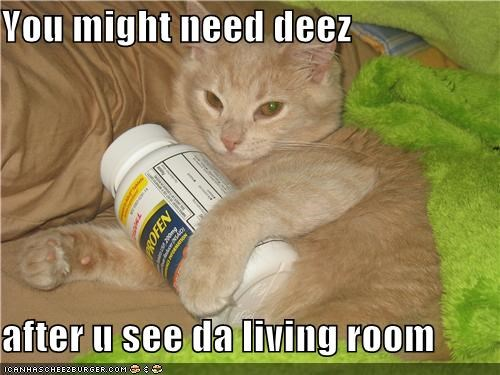 accident,after,bottle,btw,caption,captioned,cat,damages,ibuprofen,just saying,living room,need,pills
