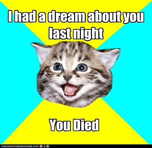 Happy Cat:I had a dream about you