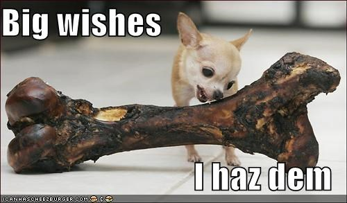 Big wishes  I haz dem