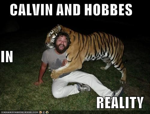 CALVIN AND HOBBES IN REALITY
