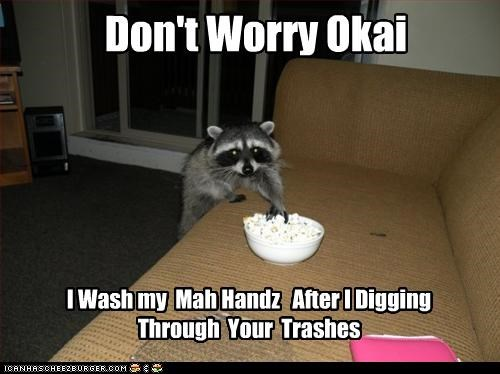 caption,captioned,considerate,consideration,dont worry,hands,Popcorn,raccoon,reassuring,stealing,washing,washing hands
