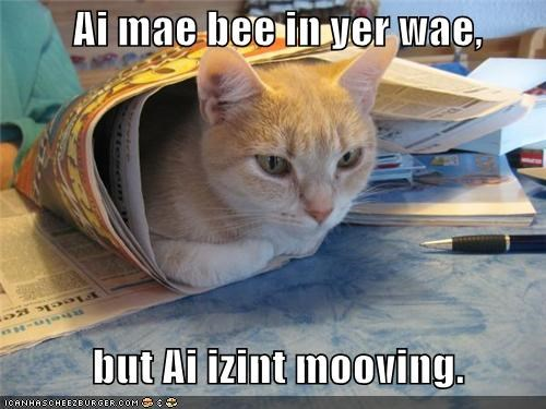 Ai mae bee in yer wae,      but Ai izint mooving.