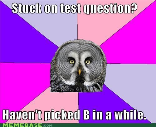 Wise Owl: Test Question