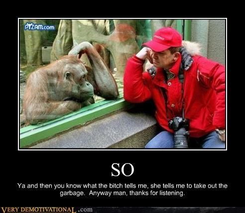 camera,chat,guy,monkey,zoo