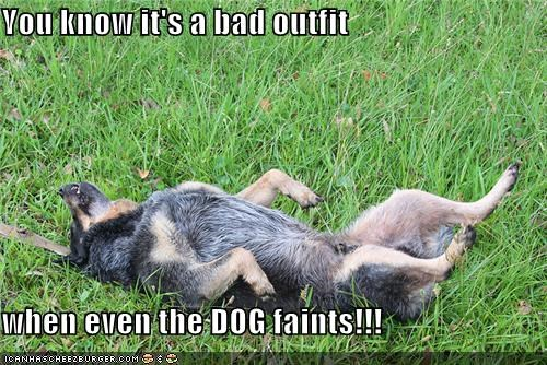 You know it's a bad outfit  when even the DOG faints!!!
