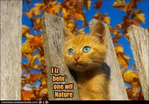 I iz bein' one wif Nature