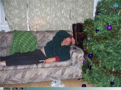 Does This Place Look Comfy or What?