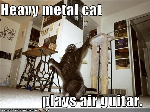 Heavy metal cat  plays air guitar.