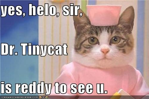 yes, helo, sir, Dr. Tinycat is reddy to see u.