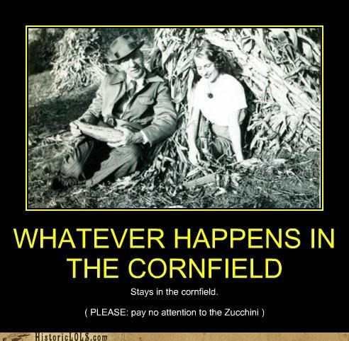 WHATEVER HAPPENS IN THE CORNFIELD