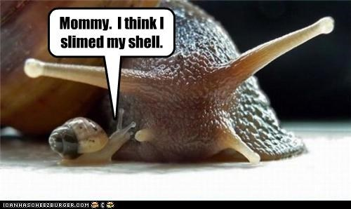 Mommy.  I think I slimed my shell.