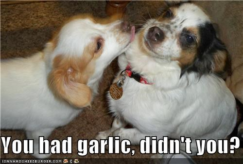 You had garlic, didn't you?