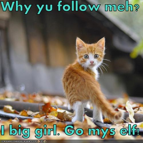 Why yu follow meh?  I big girl. Go mys elf!