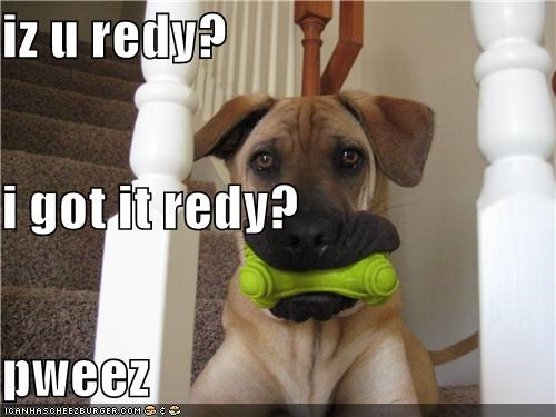 iz u redy? i got it redy? pweez