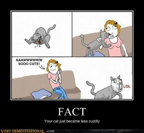 cuddly,fact,cute
