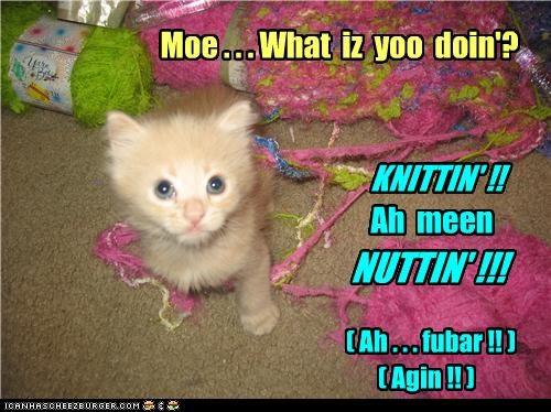 Moe . . . What  iz  yoo  doin'?