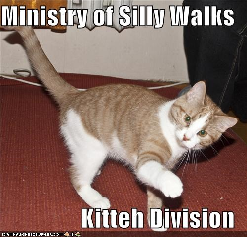 Ministry of Silly Walks  Kitteh Division