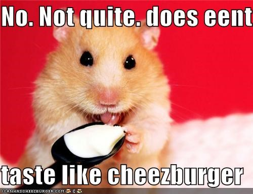 No. Not quite. does eent  taste like cheezburger