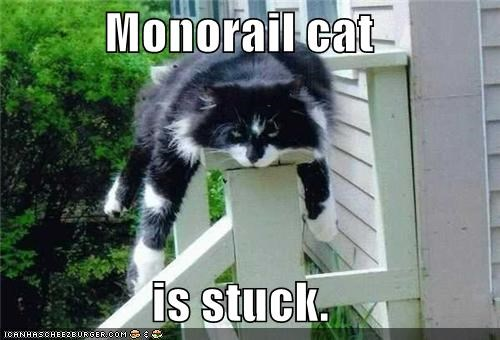 Monorail cat  is stuck.
