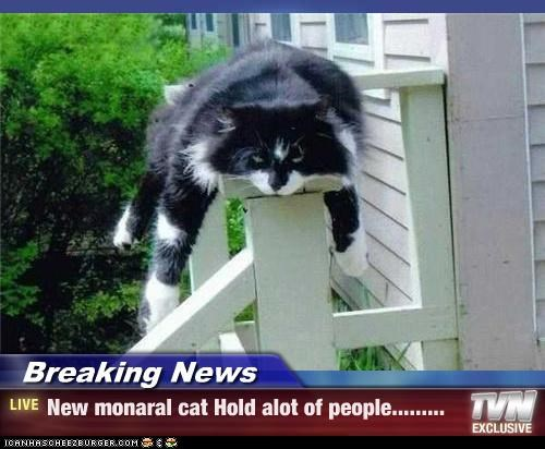 Breaking News - New monaral cat Hold alot of people.........