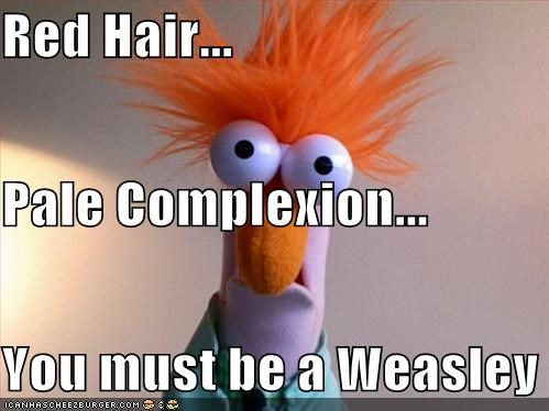 You Must Be A Weasley...