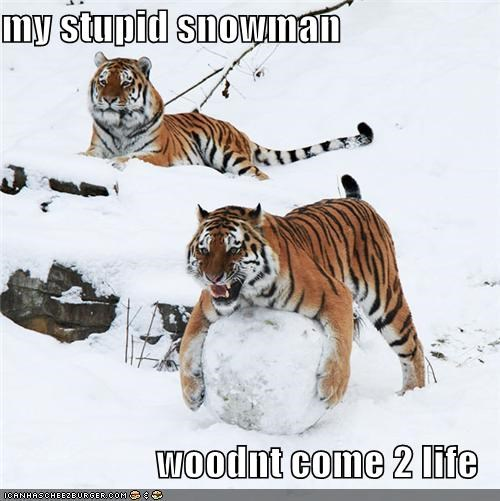 my stupid snowman  woodnt come 2 life