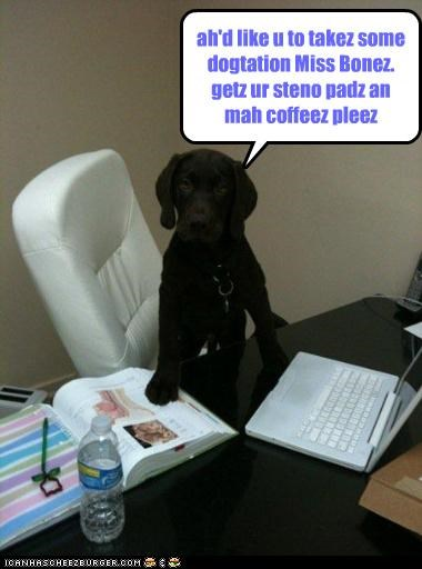 ah'd like u to takez some dogtation Miss Bonez. getz ur steno padz an mah coffeez pleez