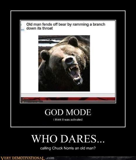 old man,bear,chuck norris
