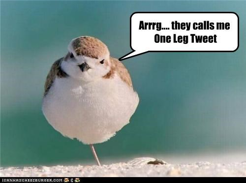 Arrrg.... they calls me  One Leg Tweet