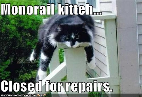 Monorail kitteh...  Closed for repairs.