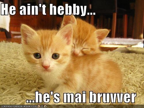 He ain't hebby...  ...he's mai bruvver
