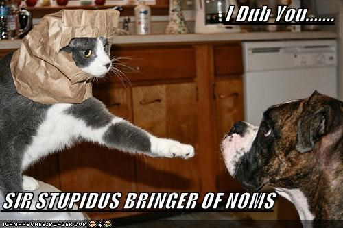 I Dub You.......  SIR STUPIDUS BRINGER OF NOMS