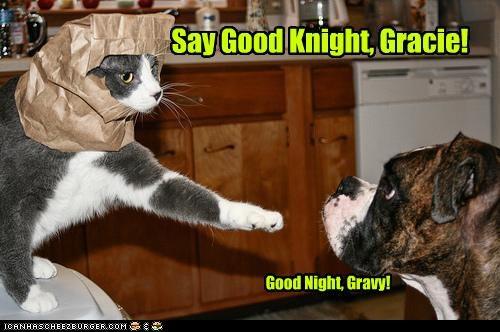 Say Good Knight, Gracie!