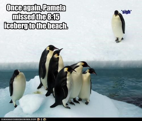 Once again, Pamela missed the 8:15 iceberg to the beach.
