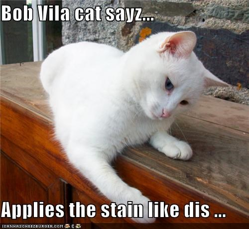 application,apply,bob vila,cabinet,caption,captioned,cat,demonstration,home improvement,lacquer,showing,stain