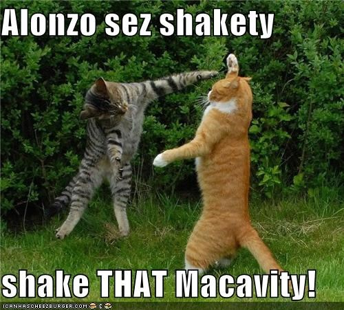 Alonzo sez shakety  shake THAT Macavity!