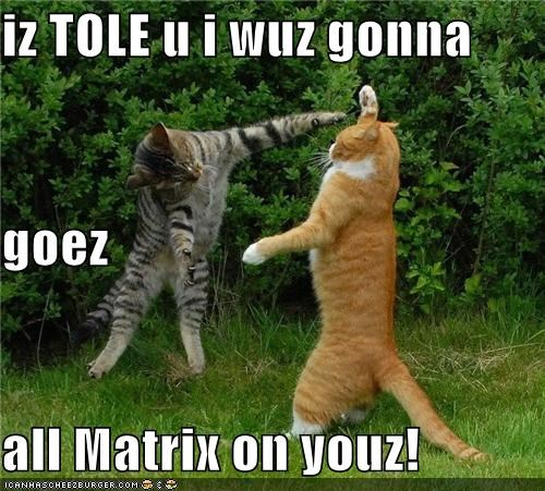 iz TOLE u i wuz gonna  goez all Matrix on youz!