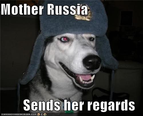 costume,dressed up,hat,hello,husky,regards,russia,russian