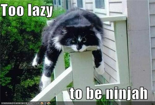 Too lazy   to be ninjah