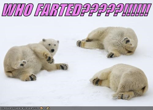 WHO FARTED?????!!!!!!