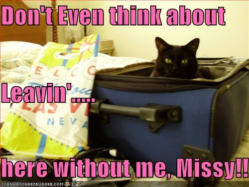 Don't Even think about Leavin'..... here without me, Missy!!