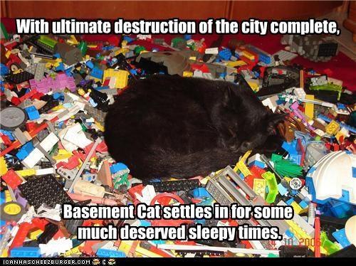 Basement Cat: destoryer of worlds