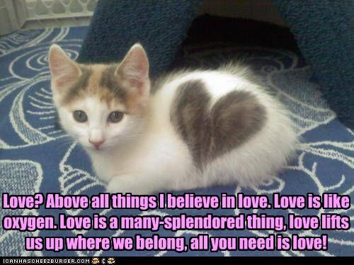 Love? Above all things I believe in love. Love is like oxygen. Love is a many-splendored thing, love lifts us up where we belong, all you need is love!