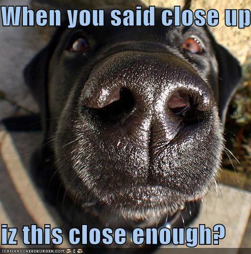 When you said close up...  iz this close enough?